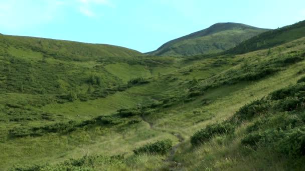 Malebná horská krajina v zóně alpské louky