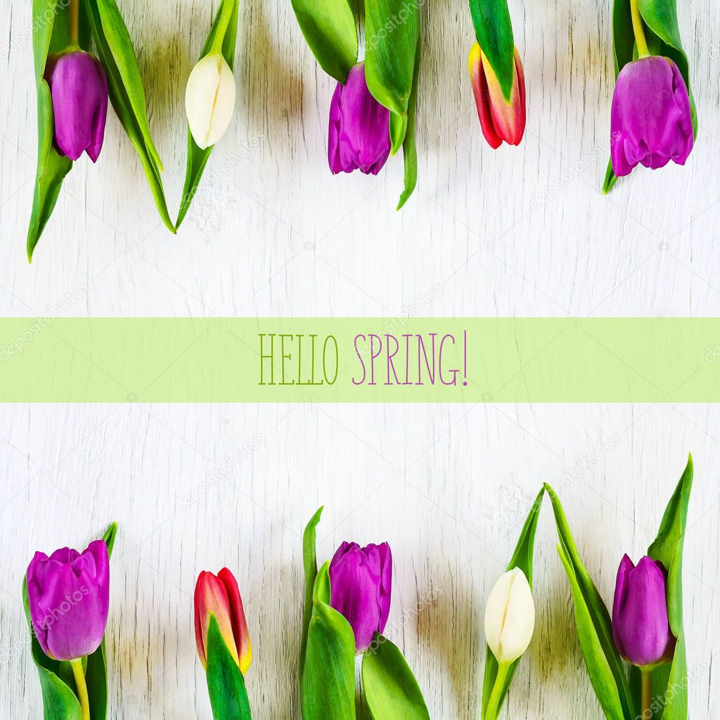 Beautiful tulips against white wooden background. The inscription Hello spring. Copy space.