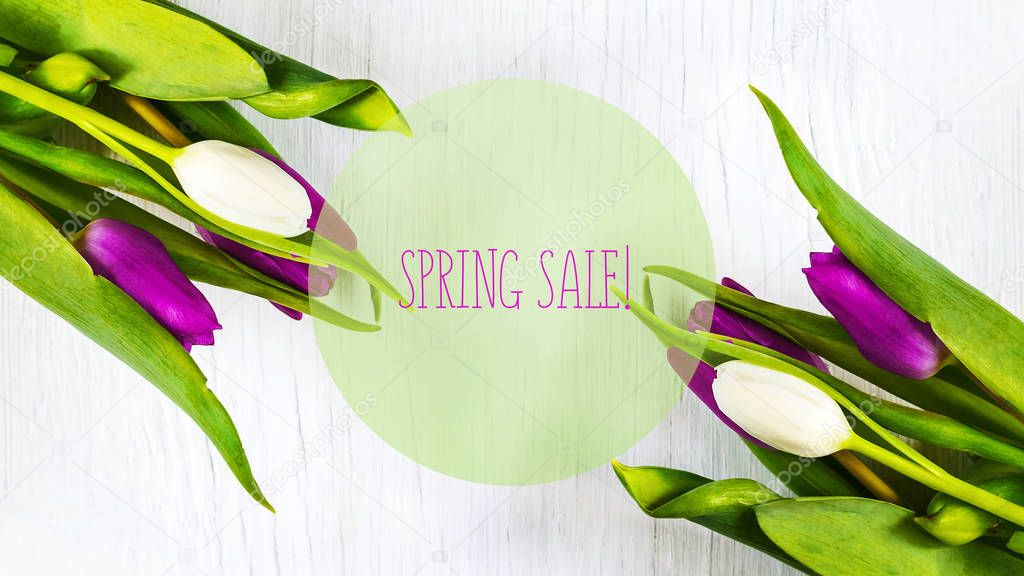 Beautiful tulips on white tree background. Concept Spring sale.