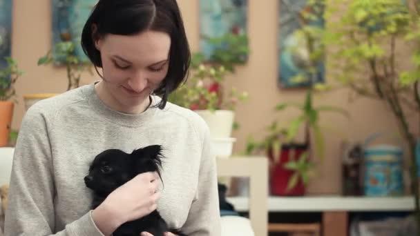Fiatal nő kisállat chihuahua kutya otthon a kanapén. Állatok-ellátás