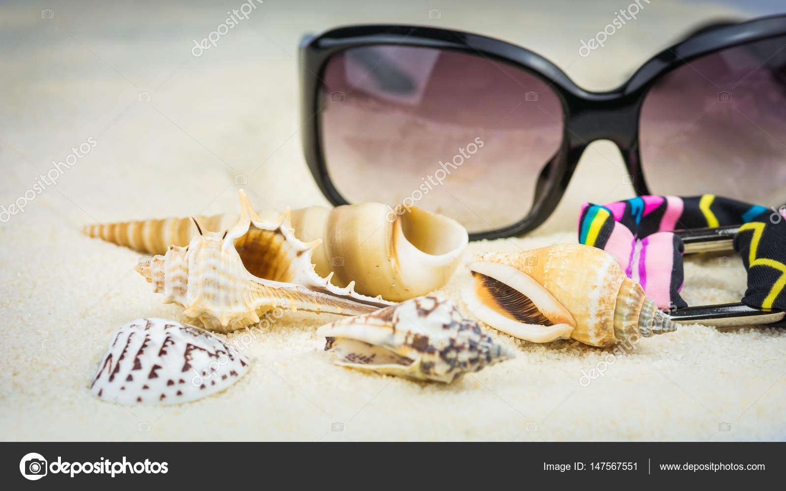 Costume Da Bagno Conchiglia : Tema di vacanza di estate con conchiglie di mare occhiali da sole