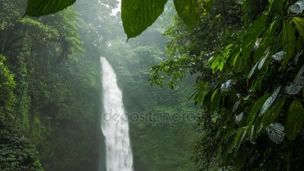 Skryté v bujné džungli zelené tropické vodopád. Zelené listy pohybu vánek větru. Vysoká vlhkost vzduchu