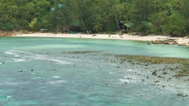 Tropická písečná pláž s palmami a azurově oceánu vlny válcování během odlivu