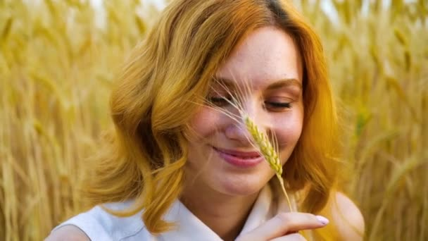 Portrait of happy redhead girl playing with wheat ear in summer field