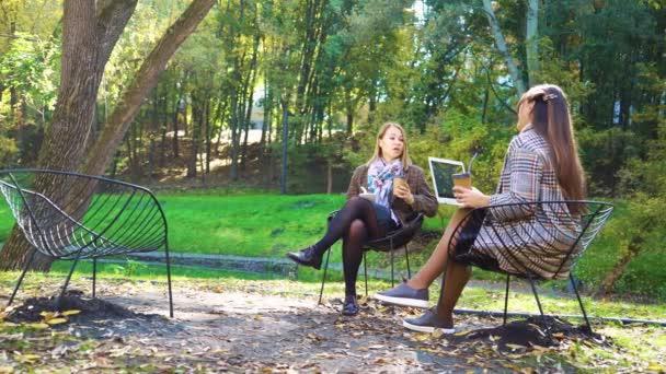 Successful girls discussing business in beautiful park
