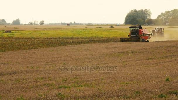 2016 21. srpna, Litva, Ukmerges regionu. Kombajn stroj na sklizeň pšenice pole práce. Zemědělství