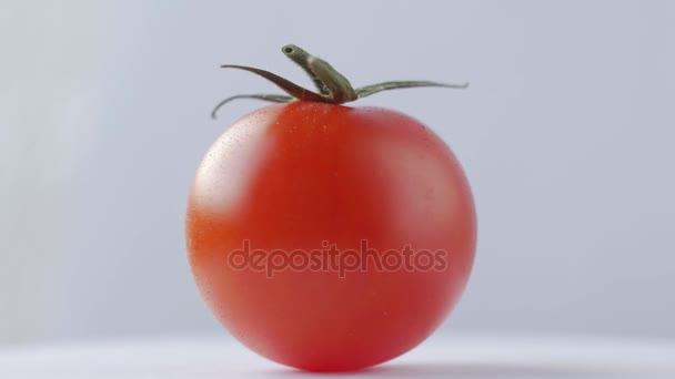 Čerstvé rajče rotace na bílém pozadí