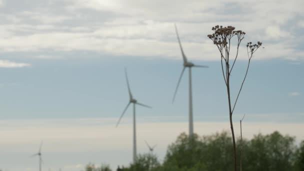 Wind Turbine Bauernhof, Stromgeneratoren, auf Feld bewölktem Himmelshintergrund