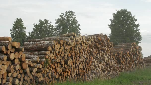 timber piled up after felling