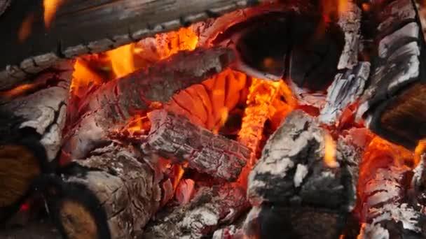 Palivové dříví a horké uhlí do grilu, oheň pro maso vařené