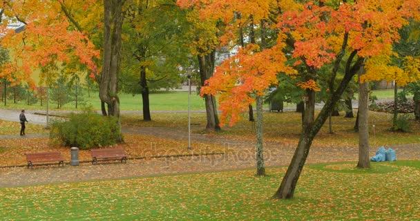 Emberek séta, őszi város.