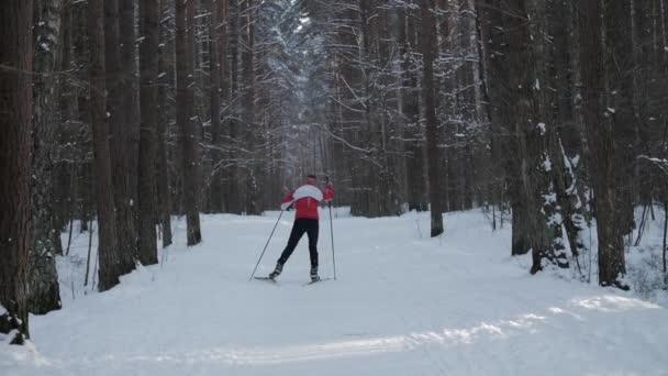 Muž lyžování jedině příroda.