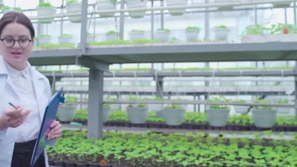 Üvegházi munkások nézik a növényeket, elemzik a növekedési feltételeket, kutatnak