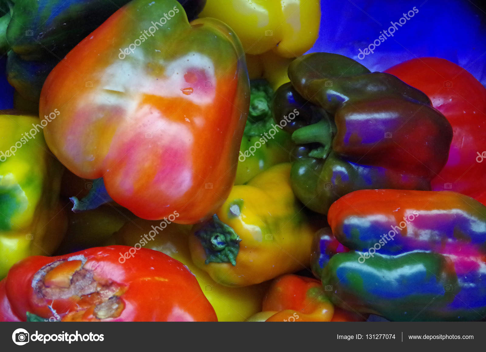Rainbow colored bell peppers ⬇ Stock Photo, Image by © pellegrino13  #131277074