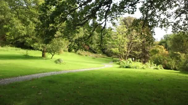 zelená venkovské přírodní krajina