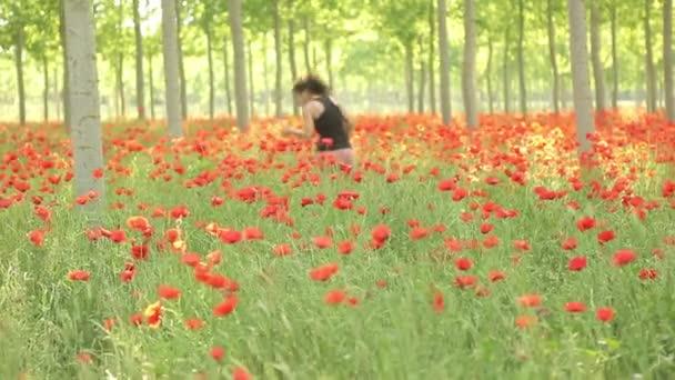 Sexy žena na pole máku, sledování snímku, krásná pole plné červené květy a zelenými stromy, pole máku, jaro pozadí, příroda, letní atmosféru, čerstvé nové plodiny