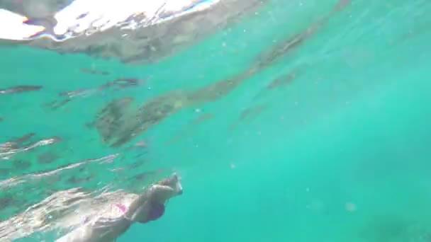 Woman in bikini scuba diving