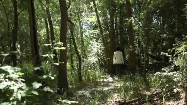 ragazza che cammina nella foresta