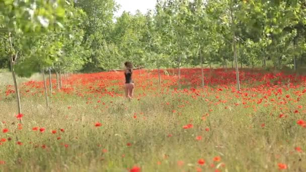 Sexy Woman on Poppy Field, tracking shot, Beautiful field full of red flowers and green trees, Poppy Field, spring background, nature landscape, summer feel, fresh new crops.