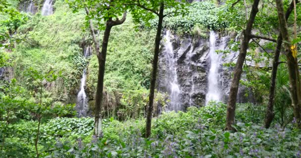 waterfall in tropical nature landscape, power of natural resources, pure green energy, beautiful calm environment, powerful aqua water fall cascade, national park protected area lake and river