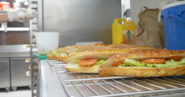 making sandwich with tomato, ham, cheese, lettuce, boiled eggs and salad preparing snack, fresh vegetables and meat healthy fast food, meal sub sandwich on white and wheat hoagies.