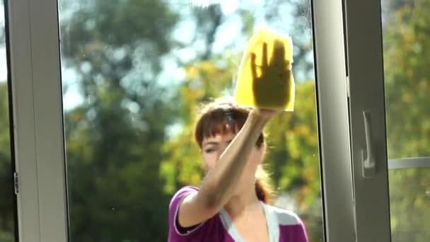 Das Mädchen wäscht ein Fenster