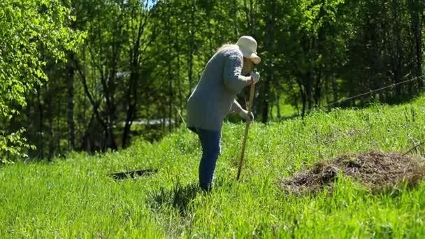 Reinigen Sie den Rasen mit einer Harke
