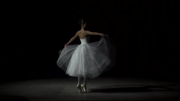 Female Ballet Dancer At A Rehearsal