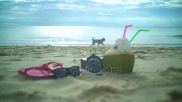 Paradise Vacation On The Tropical Beach