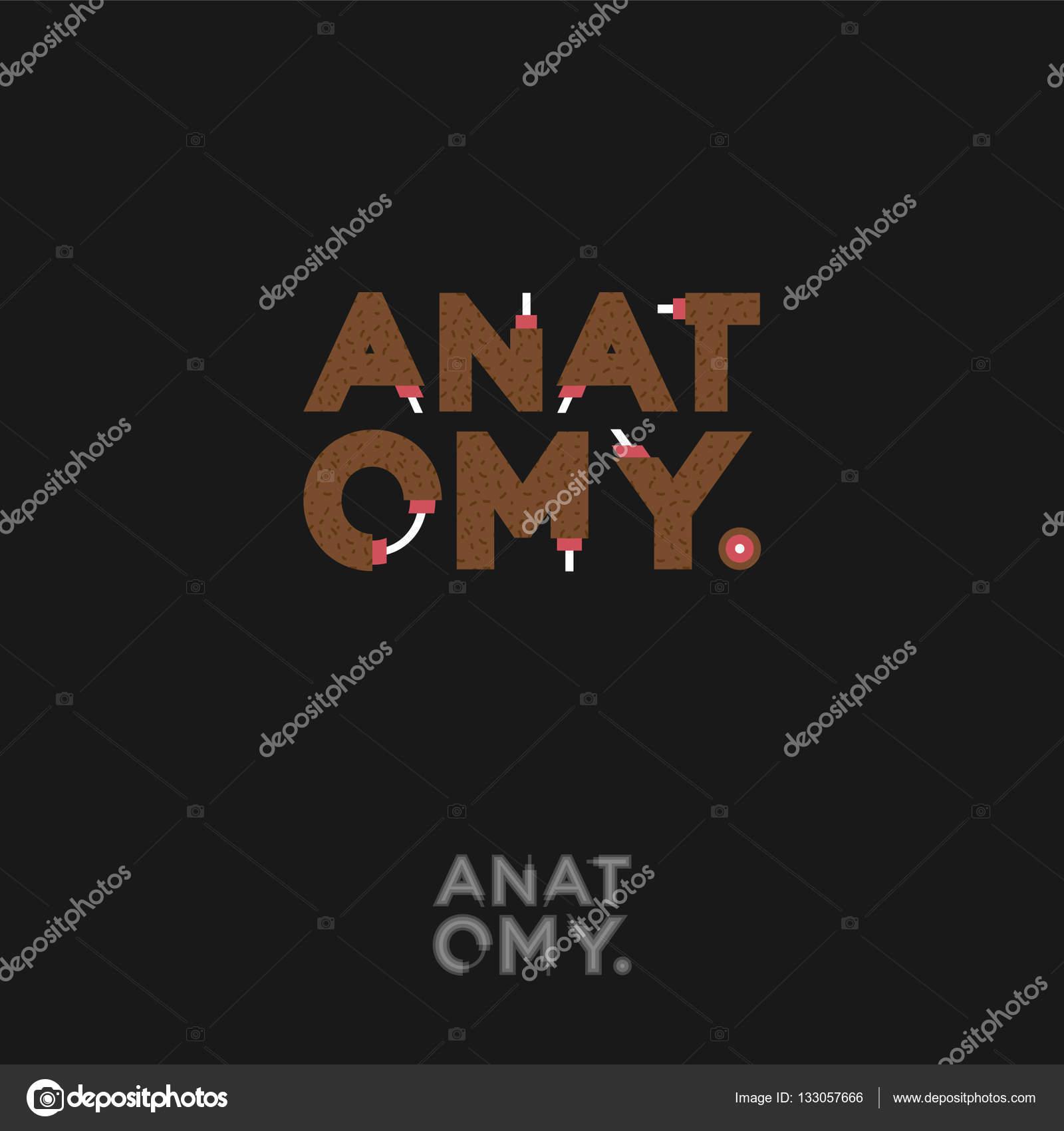 Logotipo de la anatomía. Letras divertidas. Tipografía de dibujos ...