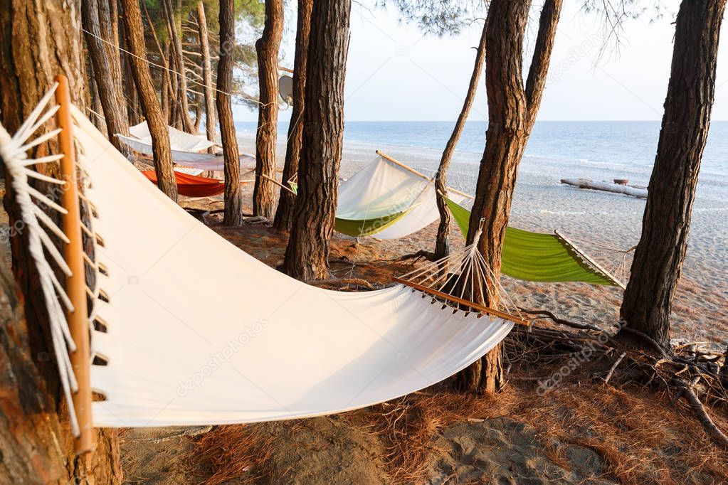 A few hammocks are hung between the pines on the beach of Black sea for a comfortable rest