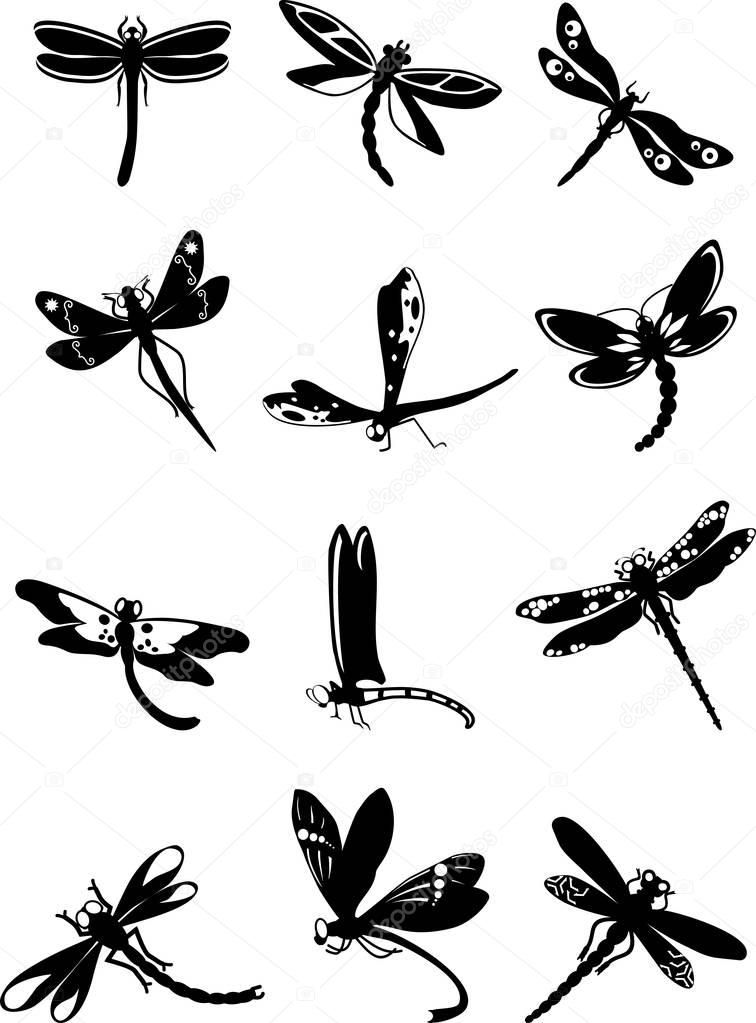Set of black silhouettes dragonflies on white background. Vector illustration