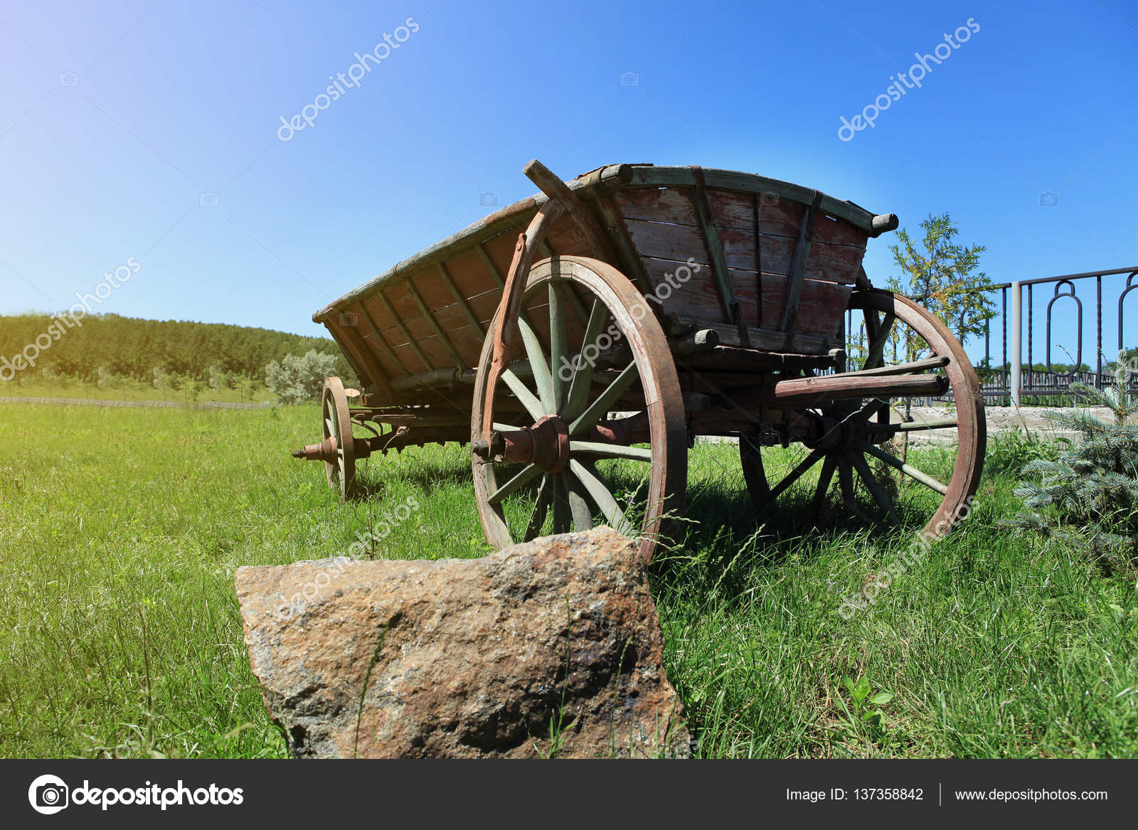 old wooden cart in a green grass,wagon horse,Old wooden cart for ...