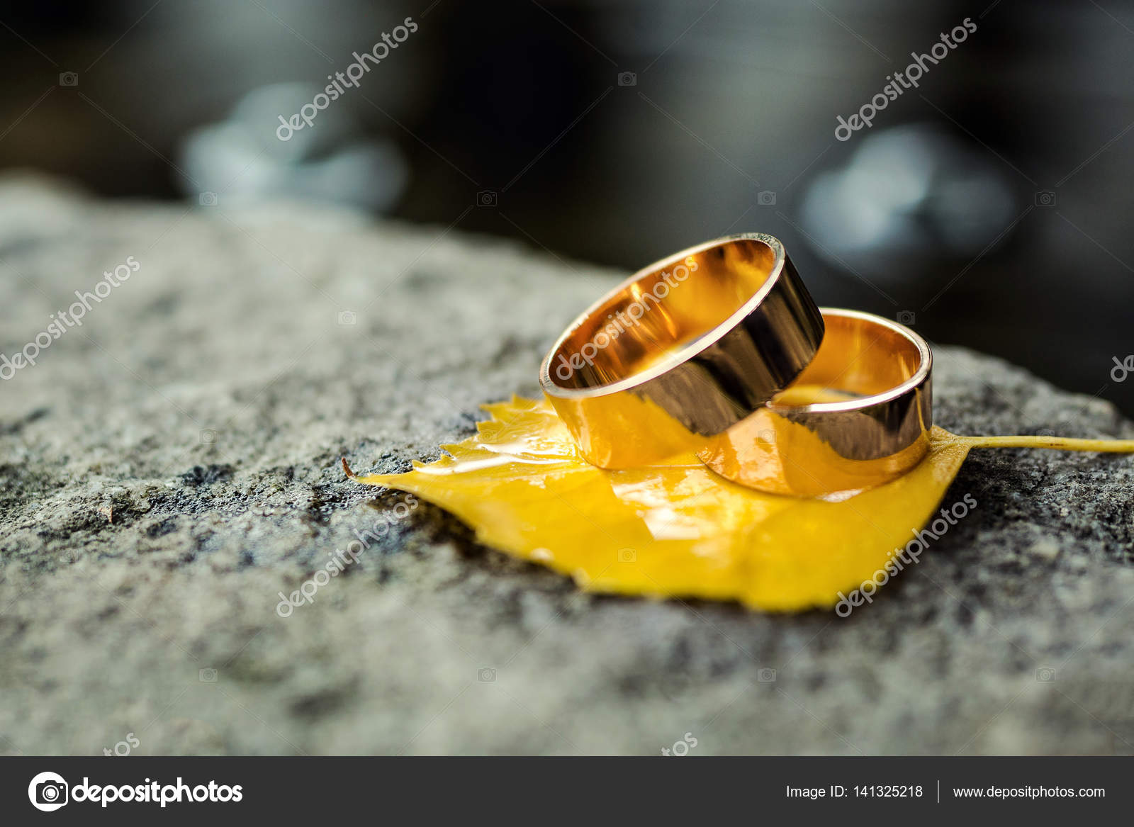 beautiful wedding rings on a stone backgroundon autumn leaves