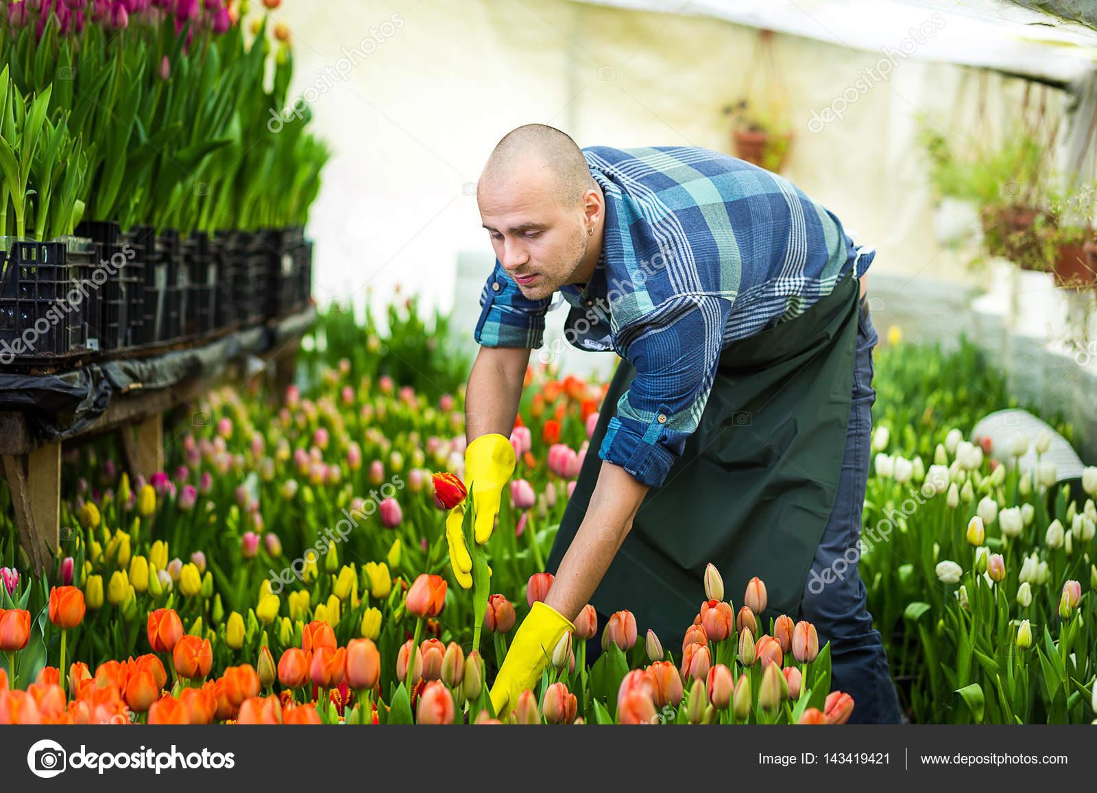 два поздравление садовнику от цветов отступит пусть