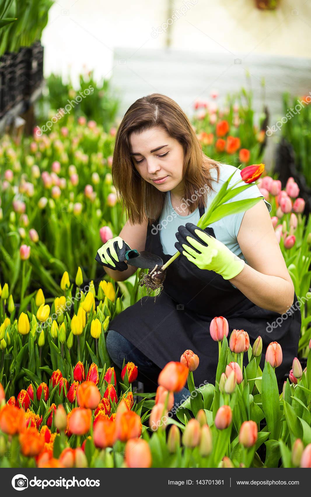 Bir bahçe yolu yapmak için form - bahçıvanlar için bir hediye