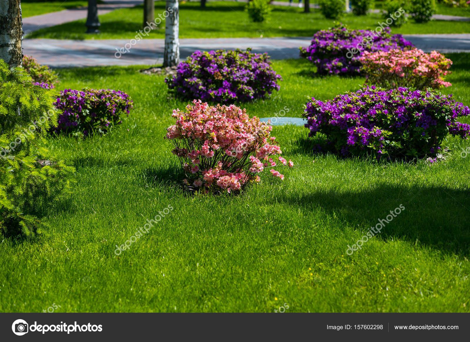 hermosos diseños de patio con jardín Paisajismo En El Jardn El Camino En El Jardn Diseo Del