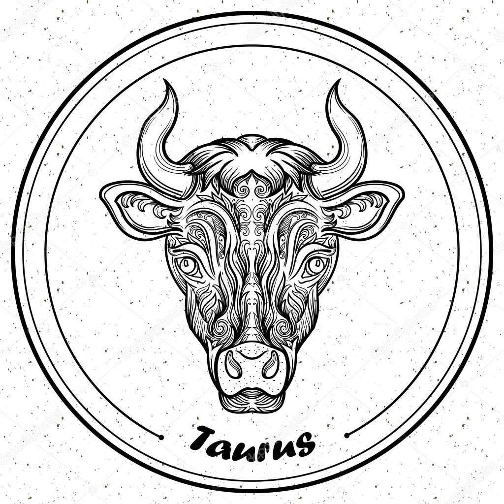 Szczegółowe Taurus Stylu Zentangle Aztec Filigran Linii Art Tatuaż