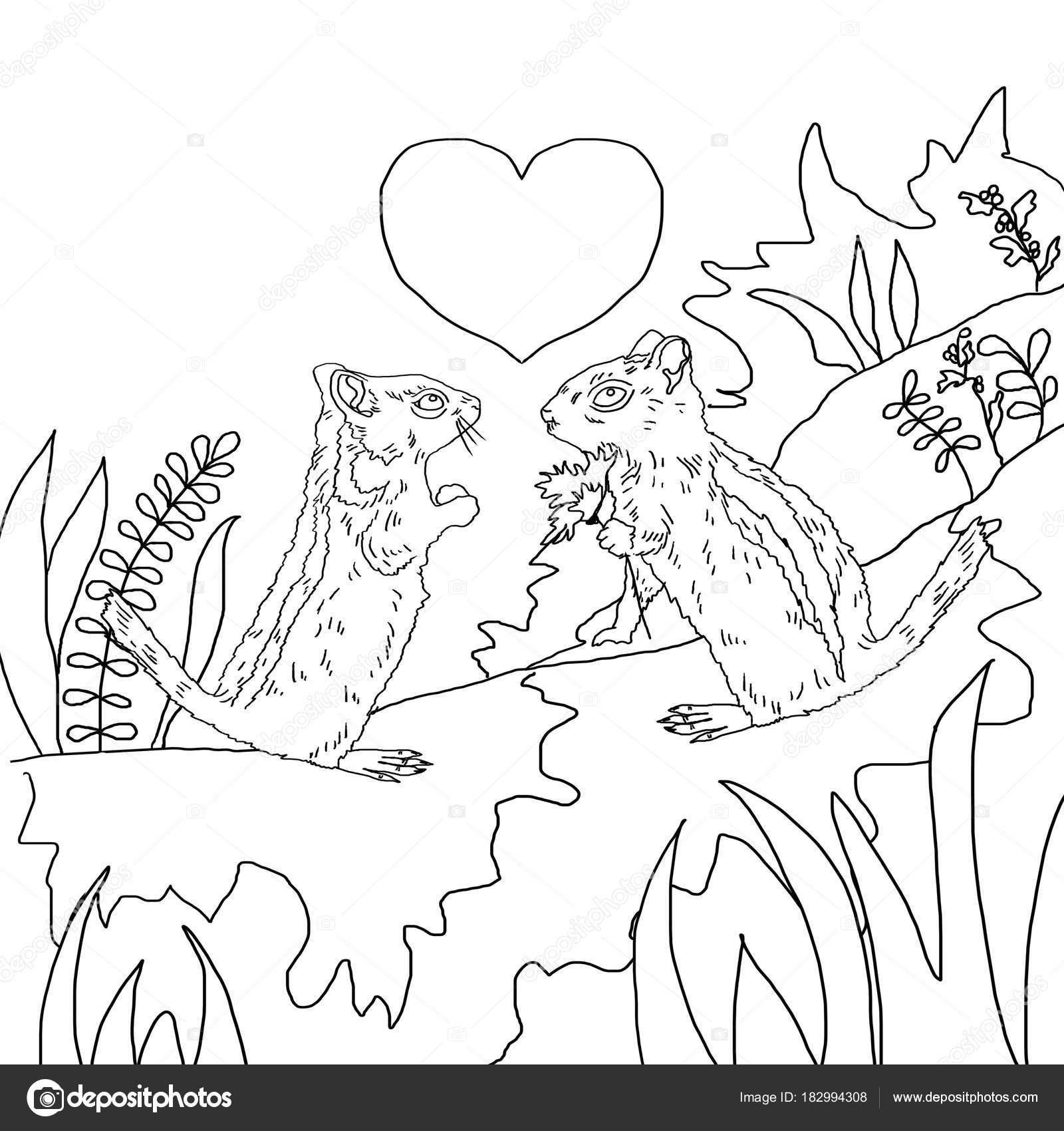 Valentinstag Färbung Verliebt Streifenhörnchen — Stockfoto ...