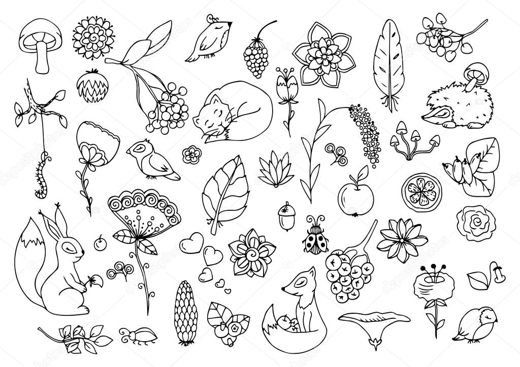 Vector illustration e, set the forest, animals and flowers. Doodle drawing. Meditative exercises. Coloring book anti stress for adults. Black white.