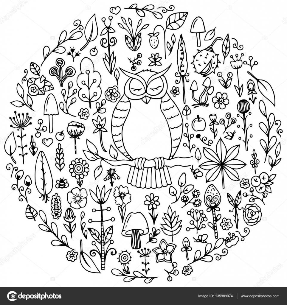 Kleurplaten Herfst Bloemen.Vector Illustratie Zentangl Ronde Set Met Een Uil En Bloemen