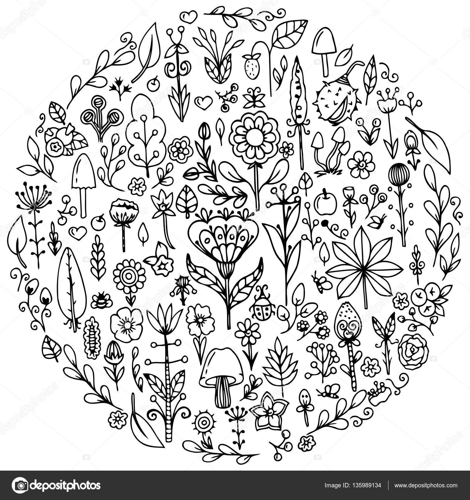 Vector Illustration Zentangl Round Set Flowers Doodle