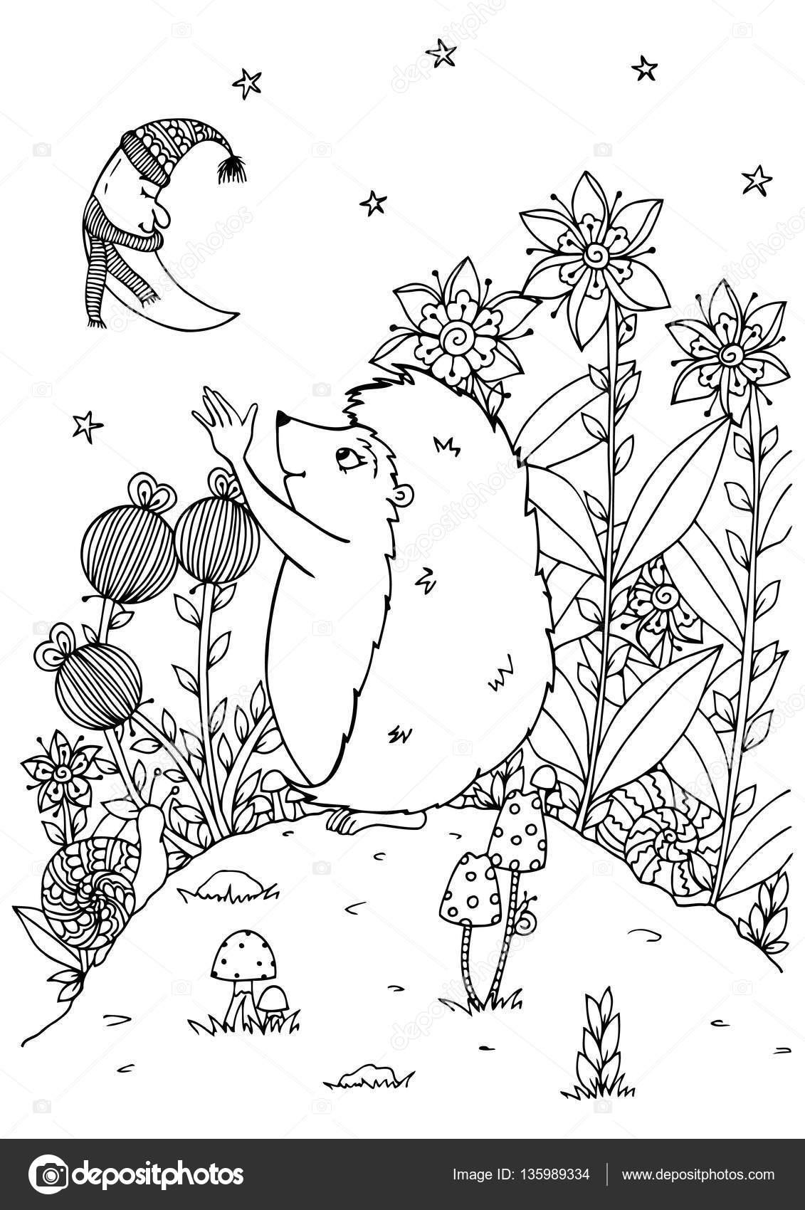 Векторная иллюстрация zentagl, еж и Новолуние. Природа ...