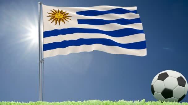 Bandiera dellUruguay svolazzanti e un calcio rotola sul prato, rendering 3d, 4 k footage