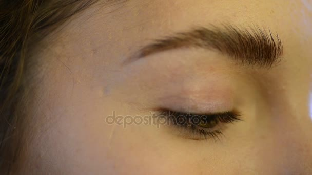 Close up green eye eyebrow of model makeup indoors