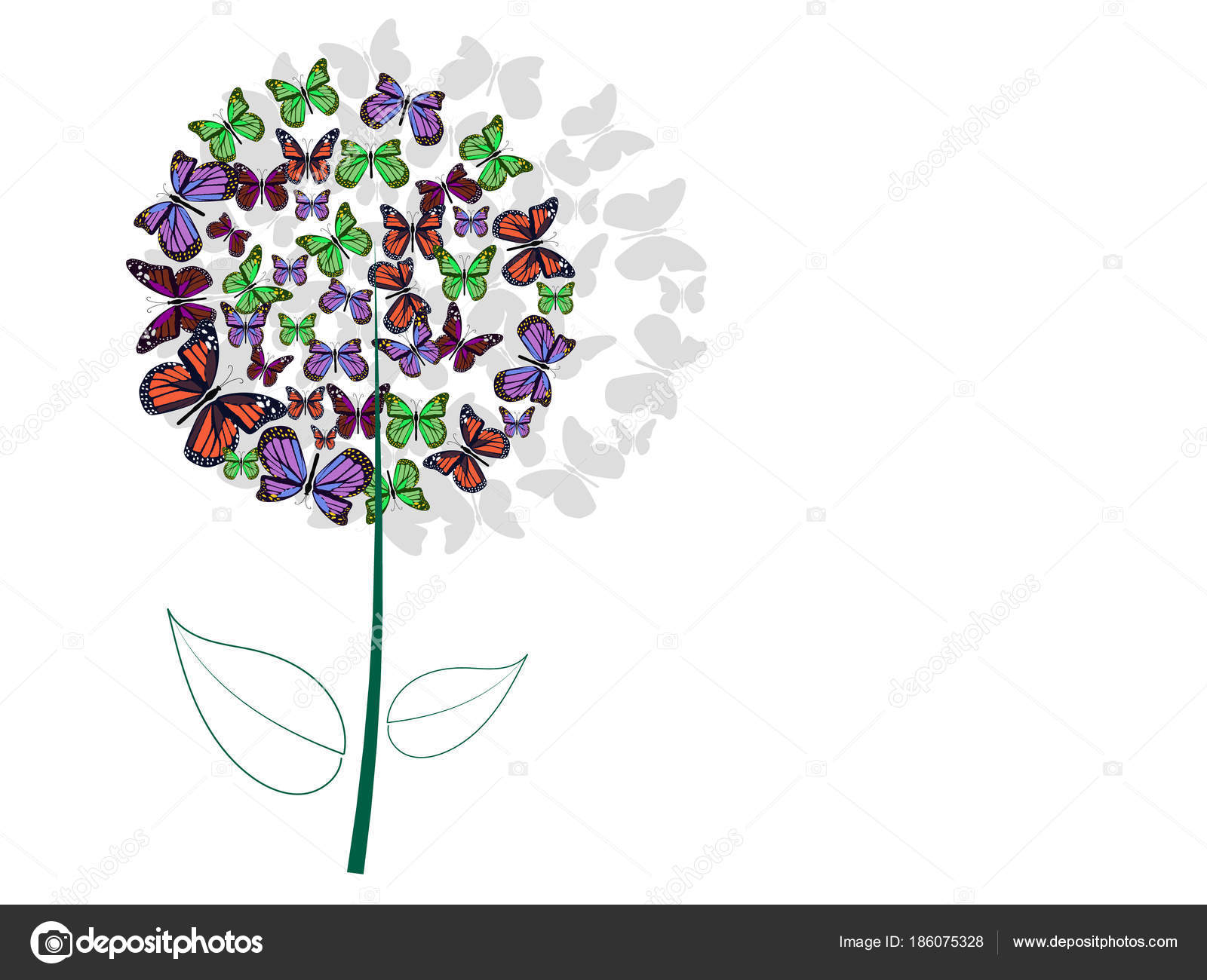 Flower Ball Butterflies White Background Stock Photo Natalylad
