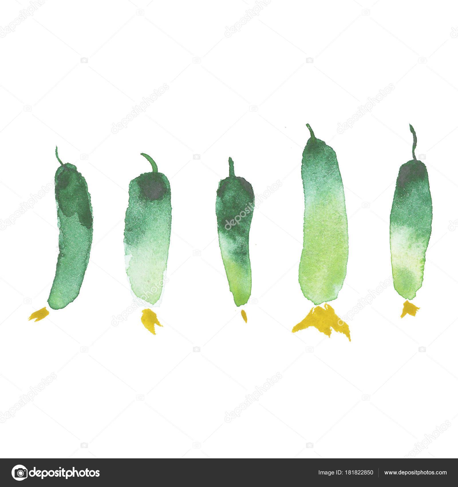 Aquarell Malerei Kunst Gemüse Restaurant Banner Hintergrund Mit ...