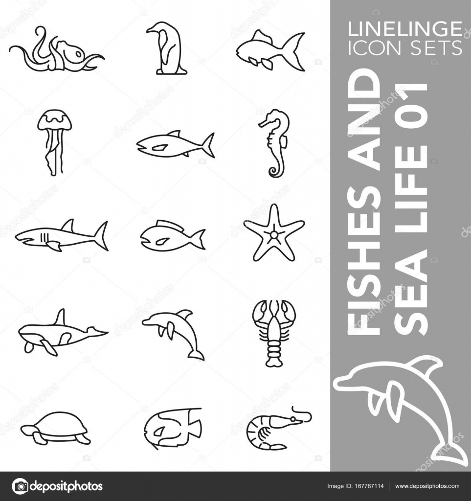 Premium stroke icon set of animal fishes shellfish reef and sea linelinge are the best pictogram pack unique linear design for all dimensions and devices stroke vector logo symbol and biocorpaavc Gallery