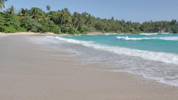 Pohled na písečné pláže Tropical island s palmami a modrá obloha na pobřeží Srí Lanky