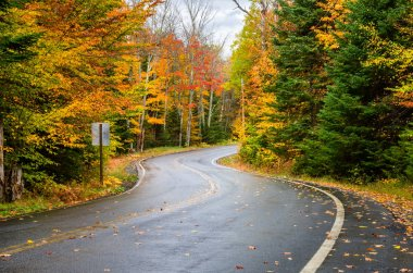 Vibrant Autumn Colours along a Scenic Winding Mountain Road